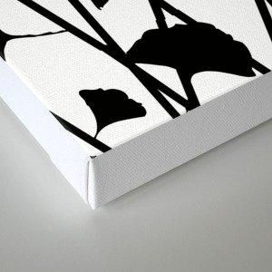 Black and white ginkgo Canvas Print