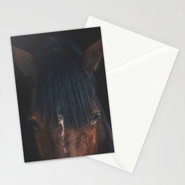 Horse - Cheyenne Stationery Cards