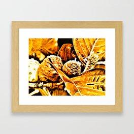 Noni Framed Art Print