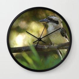Dacelo noveguineae - The Laughing Kokkaburra Wall Clock