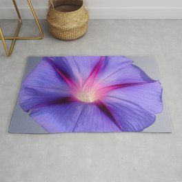 Close Up of A Morning Glory Purple and Pink Flower Rug