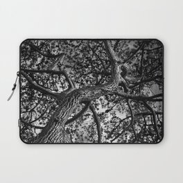 A Study of a Canadian Pine Tree Laptop Sleeve