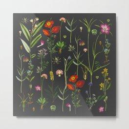 Exquisite Botanical Metal Print