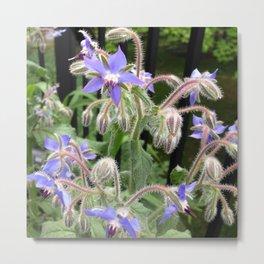 Fairy Flowers Metal Print