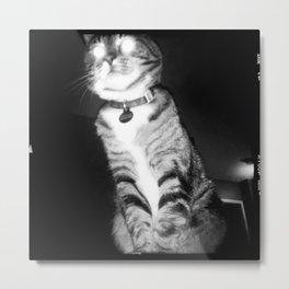 Laser Eyes Loaf Metal Print