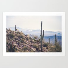 Superstition Wilderness Art Print