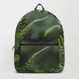 Fern - green plants Utrecht - nature fine art photography Backpack