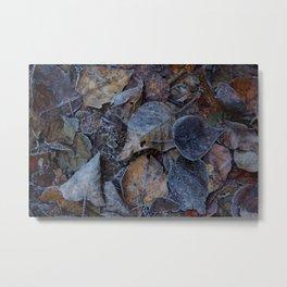 Frost & Leaves2 Metal Print