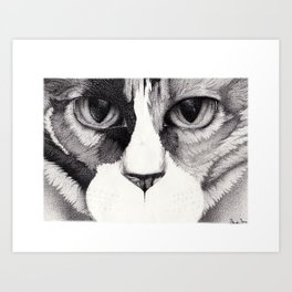 In Your Face Cat Face Art Print