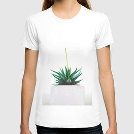 Minimal Succulent Cactus T-shirt