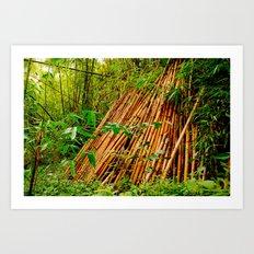 Bamboo sticks  Art Print