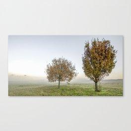 Suburban trees (n.2) Canvas Print
