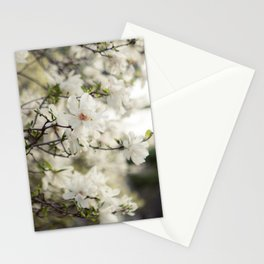 Magnolia Dreams Stationery Cards