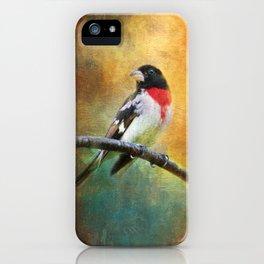 Rose-breasted Grosbeak ~ Ginkelmier Inspired iPhone Case
