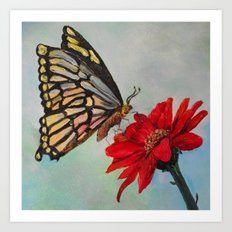 Swallowtail and Gerbera Square Art Print