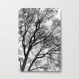 Tree Silhouette Series 1 Metal Print