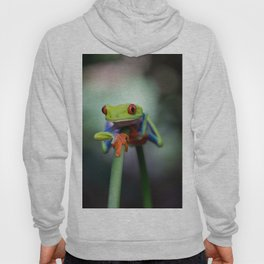 Costa Rican Tree Frog Hoody