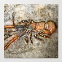 lobster Canvas Prints featuring Lobster by Buster Fidez