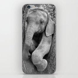 Zambezi Orphan Collection (1 - 10) iPhone Skin