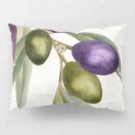 Olive Branch I Pillow Sham