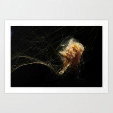 Jellyfish tangle Art Print