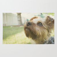 terrier Area & Throw Rugs featuring Yorkshire Terrier by coffeeandtartan