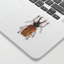 Macrodontia Cervicornis Sabertooth Beetle Sticker