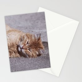 wheeee Stationery Cards