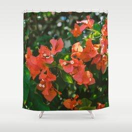 Tropical Hawaii IV Shower Curtain