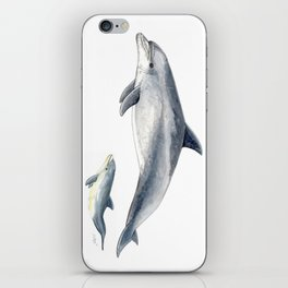 Bottlenose dolphin iPhone Skin