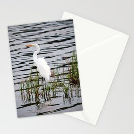 Egret Patiently Waiting Stationery Cards
