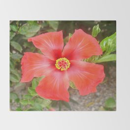 Head On Shot of a Red Tropical Hibiscus Flower Throw Blanket