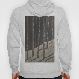 Birch Forest - Spring is coming Hoody