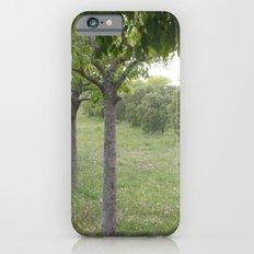 Green Land Slim Case iPhone 6s