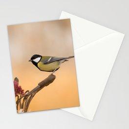 Songbird (Great Tit) on Autumn Day #decor #society6 #buyart Stationery Cards