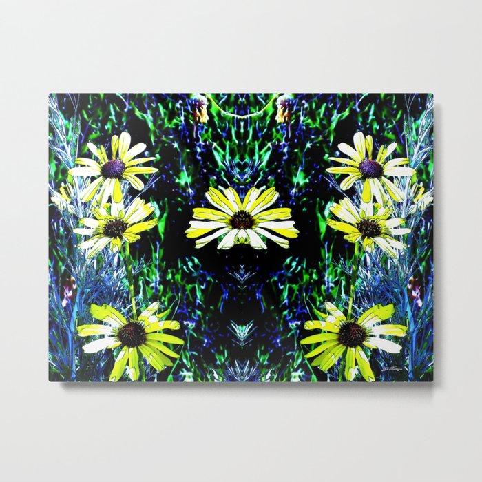 Daisies. © J&S Montague. Metal Print