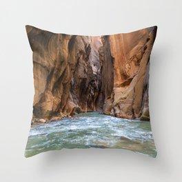 Swept Away (The Narrows, Zion National Park, Utah) Throw Pillow