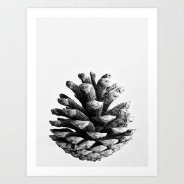 pinecone nature plants Art Print