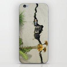 Between the Cracks iPhone & iPod Skin