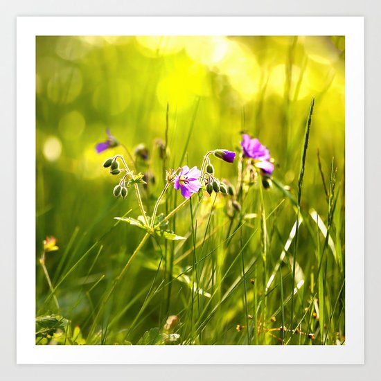 Beautiful meadow flowers - geranium on a sunny day - brilliant bright colors Art Print