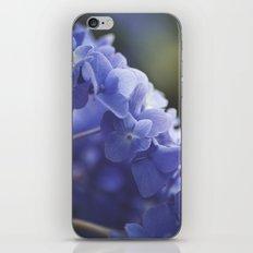 Pretty in Purple iPhone & iPod Skin