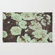 Mint Green Lichen Rug
