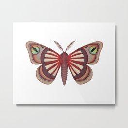 demon (made up moth) Metal Print