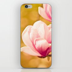spring magnolia iPhone & iPod Skin
