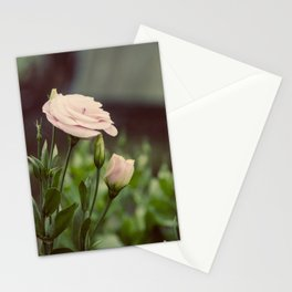 Pink Delight Stationery Cards
