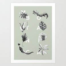 Botanica Letters | Pale Green Art Print