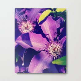 Violet Stars Metal Print