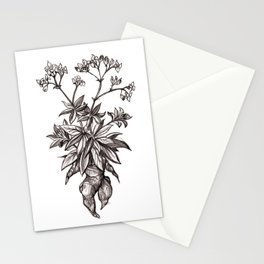 Mandragora Officinalis Stationery Cards