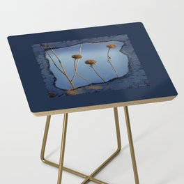 Seed Pods in Blue Frame Side Table