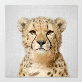 Cheetah - Colorful Canvas Print